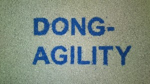 Dong agility 227